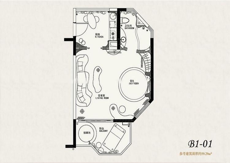 鹏欣白金湾鹏欣白金湾B1-01户型1室1厅59平方米