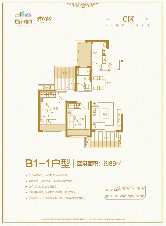 恩祥新城北大华府C区B1-1户型 2房2厅 89平米