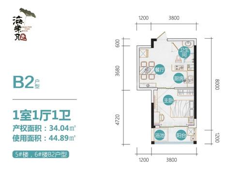 海棠月色B2户型 1室1厅 建筑面积:34㎡